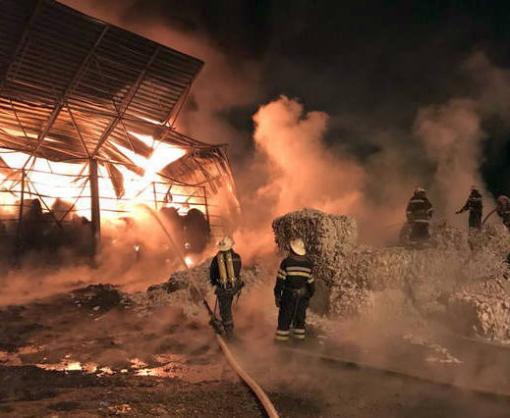 Под Харьковом тушили крупный пожар