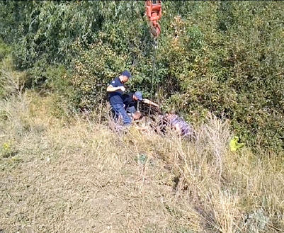 В Харьковской области в колодец свалилась корова