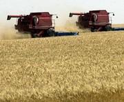 На Харьковщине идет жатва