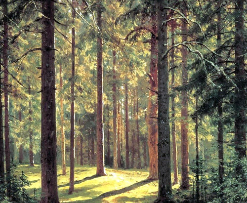 В Харьковской области создадут карту, защищающую лес
