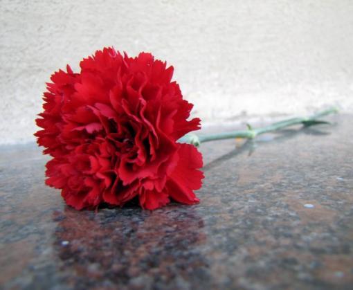 Каков порядок выплаты на погребение