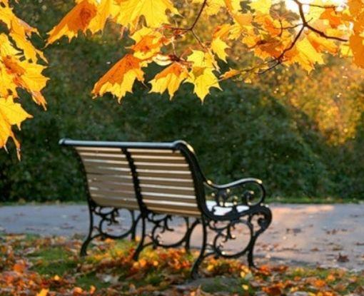 Жара этой осенью больше не вернется