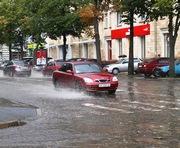 Погода в Харькове: ветер будет порывистый