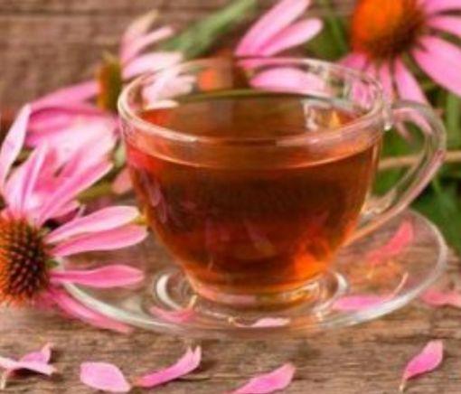 Названы самые эффективные напитки при первых симптомах простуды