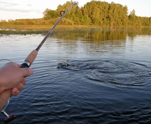 Вступает запрет на зимнюю рыбалку