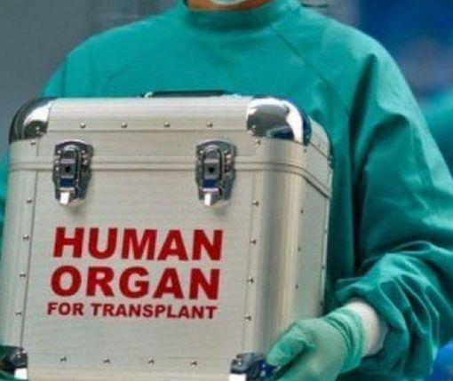 Минздрав сделал важный шаг к внедрению трансплантации в Украине