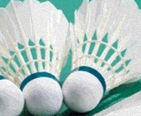 Харьковские бадминтонисты победили на этапе Кубка Европы