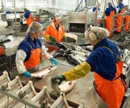 В НБУ объяснили, почему украинцы все меньше «рвутся» на заработки в Польшу