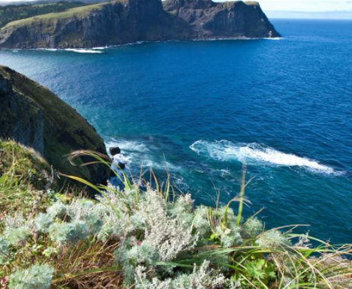 Российский политик: Россия может отдать Японии часть Курильских островов
