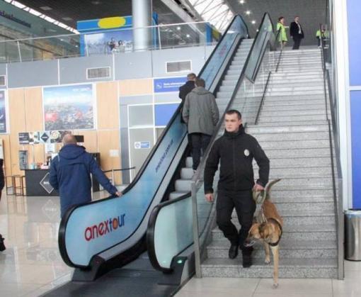 Харьковский аэропорт патрулируют с собаками
