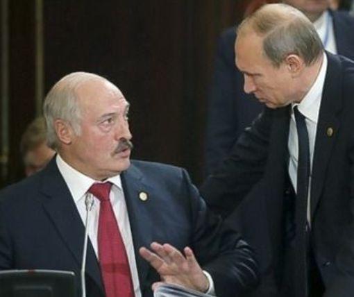 Известный карикатурист остроумно высмеял возможное объединение России и Беларуси