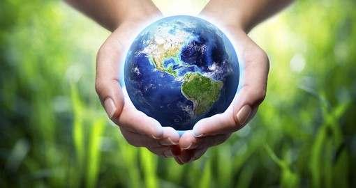 Кто лучше всех расскажет об экологии