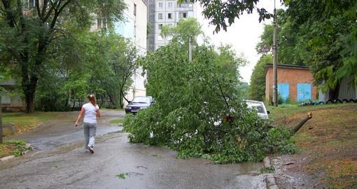 Незваный гость: в Харькове ливень пожаловал прямо в квартиру