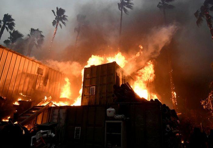 Доклад: Разрушение природы грозит человечеству глубоким кризисом