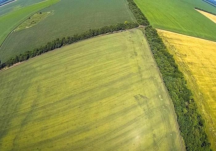 В Украине увеличены земельные сборы
