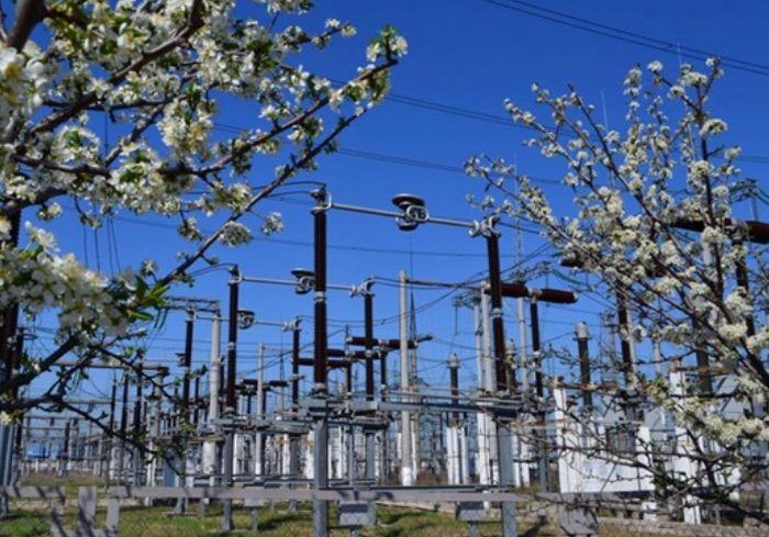Германия выделит на энергопроекты в Украине десятки миллионов евро