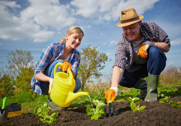 Чем заняться в саду и огороде