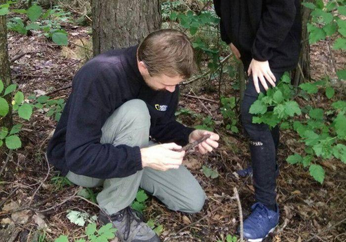 «Разрушитель древесины». Под Харьковом нашли очень редкий гриб (фото)