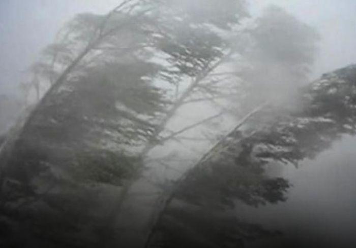 Синоптики предупредили жителей Харьковщины об ухудшении погодных условий