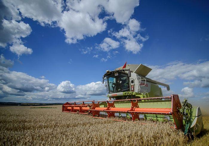 Минсельхоз США прогнозирует в Украине новый рекорд урожая зерновых