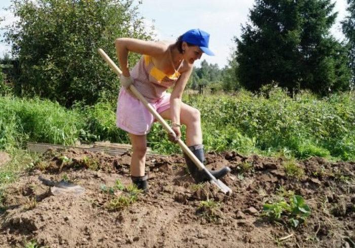 Как не надорваться на огороде