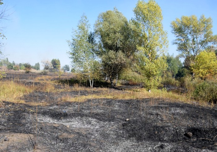 Пожар на полигоне в Чугуеве почти потушен