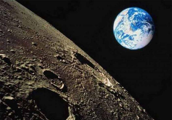 Китайские ученые вырастили хлопок... на Луне (фото)
