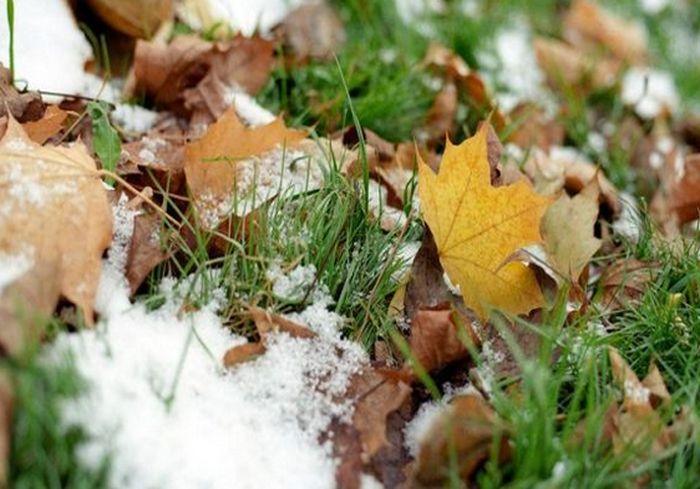 Синоптики предупредили, когда в Украине выпадет первый снег