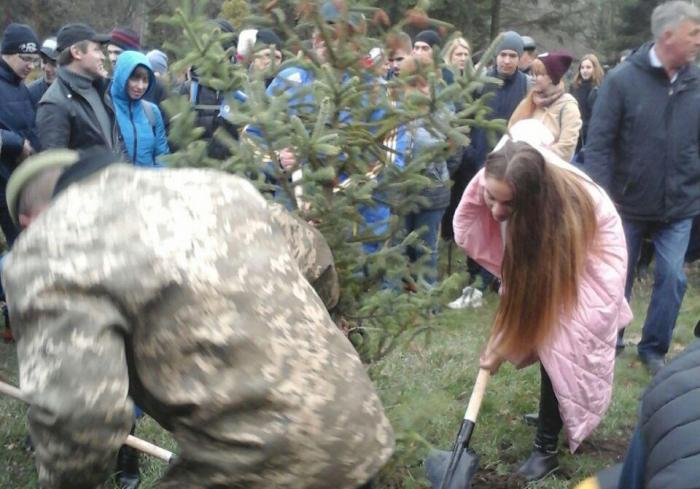 В Харькове появилось несколько десятков новых деревьев (видео)