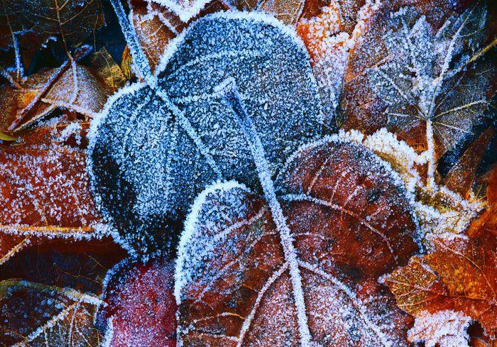 На Украину надвигается существенное похолодание