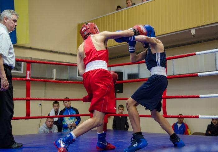 Харьковские боксеры достойно выступили на Всеукраинском турнире