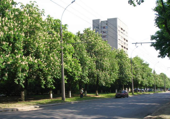 Скандал: Харьковский горсовет упорно готовится вернуть проспекту имя Жукова