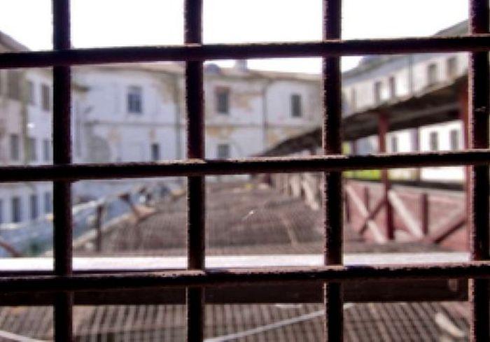 Под Харьковом отправили в тюрьму владельца собак, которые едва не разорвали мужчину (видео 18+)