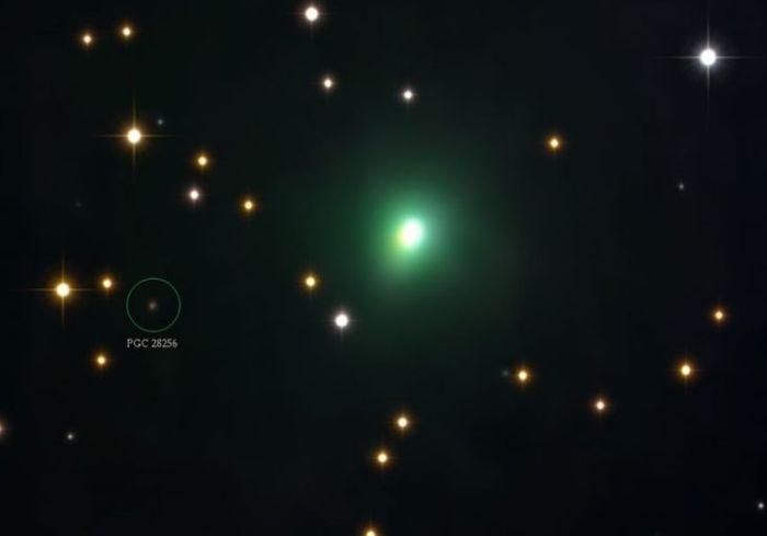 К Земле приближается комета, которая стремительно увеличивает свою яркость