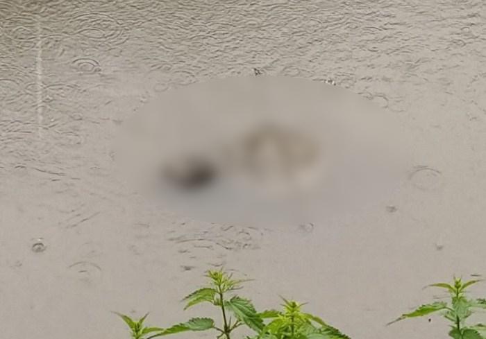 Пропавшего пенсионера нашли мертвым в реке