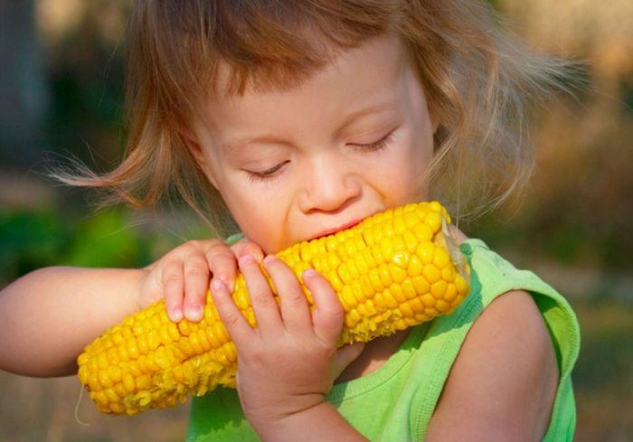 Каковы польза и вред для здоровья от молодой кукурузы