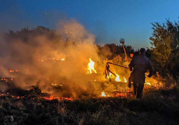 В Харьковской области пожарные 34 раза за сутки выезжали на возгорания в экосистемах