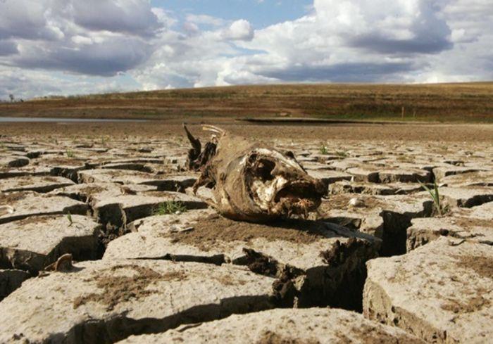 Генсек ООН предупредил, что человечество может не дожить до следующего столетия