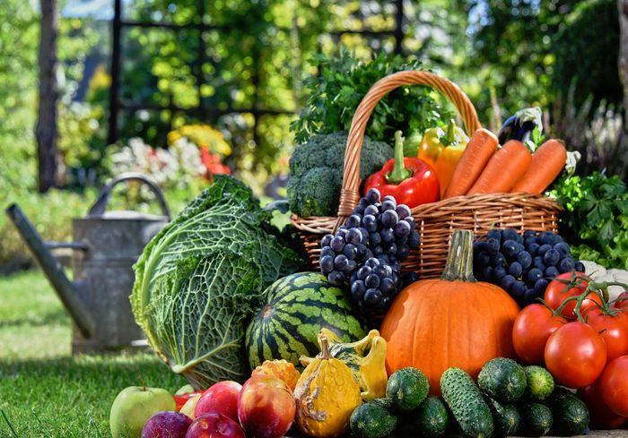 На Харьковщине незначительно подешевели сезонные овощи