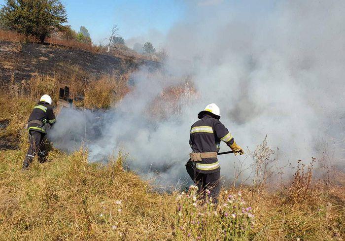 В Харьковской области за сутки спасатели потушили более 20 пожаров в экосистемах