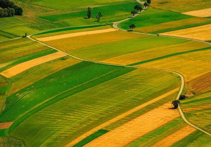 В Украине отменен запрет на продажу сельскохозземель