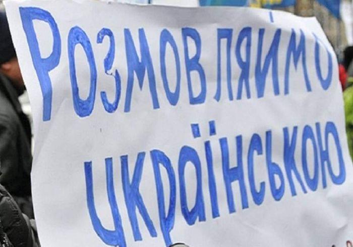 Опубликовано решение КСУ о признании языкового закона конституционным