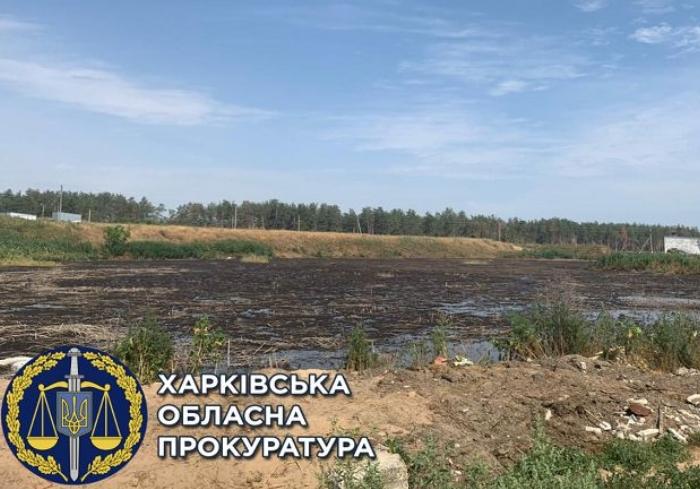 В Харьковской области расследуют загрязнение земельного участка свинофермой