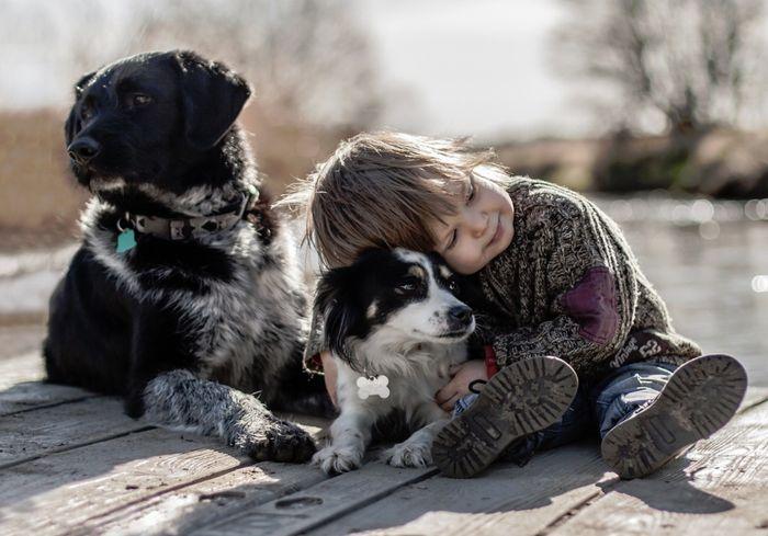 Тесные отношения с животными могут привести к болезни