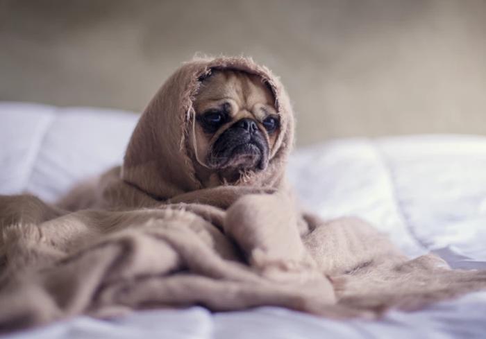 Как предотвратить осеннюю депрессию: лучшие советы от EVA Blog