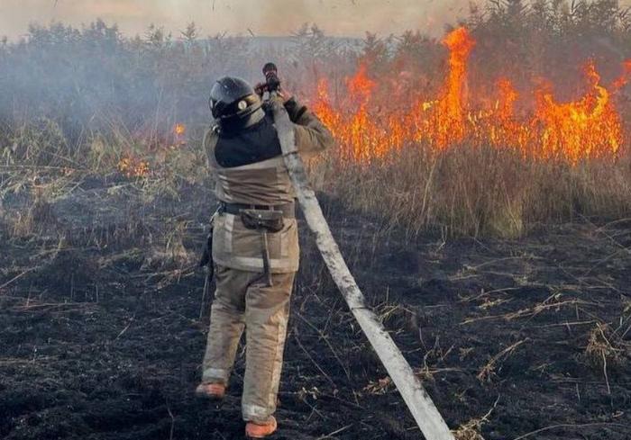 Под Харьковом пожарные несколько часов тушат масштабный пожар